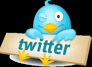 Twitter nos ofrece una buena oportunidad de negocio